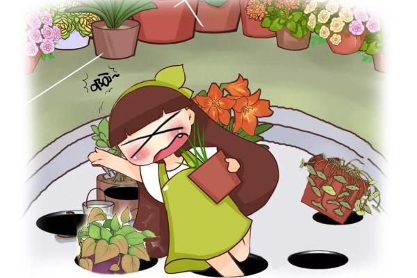 刚买的花,3天就死,花市套路真的多!