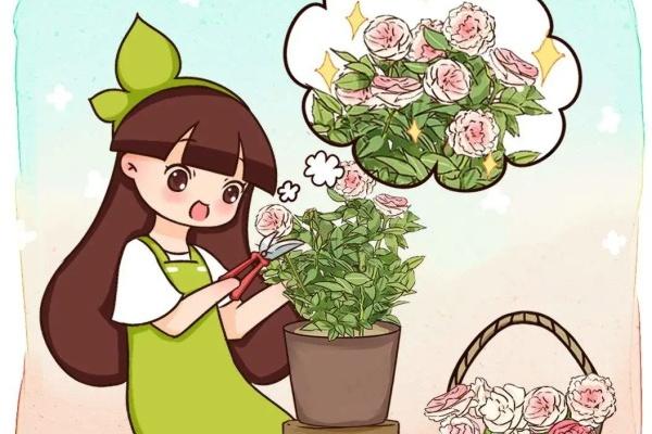 10种花,现在抓紧剪,更抗冻、好过冬!