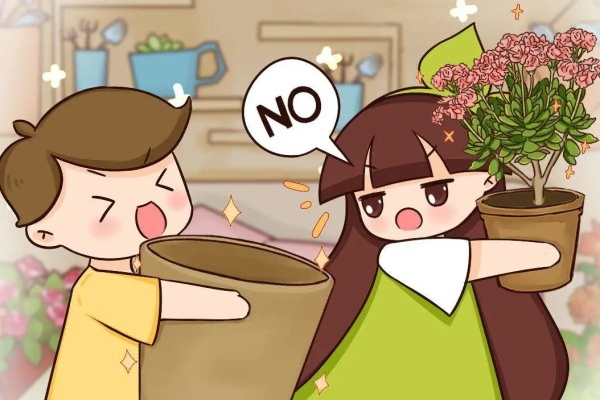 这花不能换盆,一动土,小命不保!