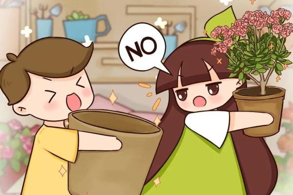 家里有这花,小花盆、挤着养,大盆反而死得快!