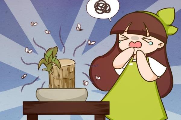 网上买的小木桩,泡水半个月,臭了还没长芽!